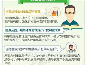 好消息!农村集体产权制度改革在邹城被列为试点