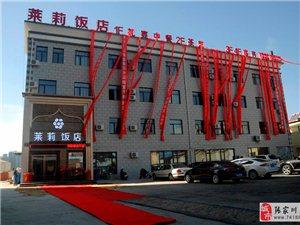 张家川全城轰动,高大上的莱莉饭店盛大开业