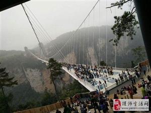 洛阳首座4D玻璃天桥,正式投入使用,造价1200万,游客有话说……