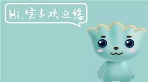 """""""大宝""""城市雕塑、""""宝丰县首届水灯・冰雕・美食节活动""""协调会召开"""