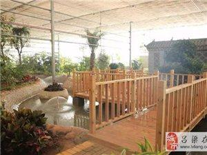 正月出游,首选兴县蔡家崖红色旅游景区