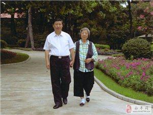 暖心行动――牵妈妈的手:你养我长大,我陪你变老!