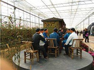寻乌 南桥蔬菜基地