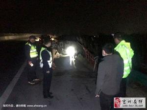 """1500斤重奶牛高速""""跳车"""" 宿州高速交警紧急救援"""