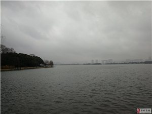 �o�a�x�^渚―��雨蒙蒙、太湖春�q。