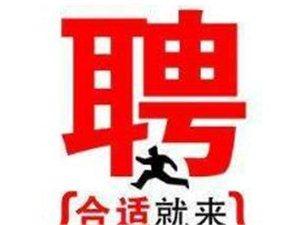 2018年阜南团县委公开招聘青少年事务工作人员(编外聘用)公告