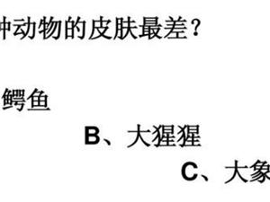 猜一下答案是啥?考�你的智商!!!