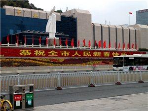 七绝・第十四届福州于山春节兰花展掠影