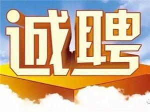 临泉在线高薪招聘1名编辑!欢迎您来挑战