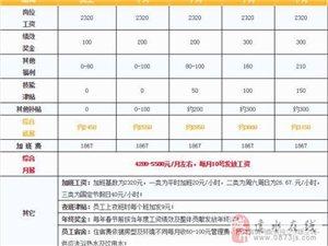 昌硕科技(上海)有限公司招普工