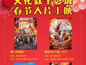 嘉峪关市文化数字电影城2018年2月28日排片表