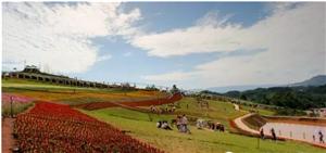 喜捷镇——宜宾御花园,坐拥岷江之滨的富饶小镇!