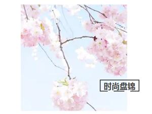 时尚盘锦3月1日街拍【九号影像工作室】