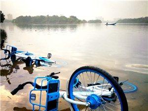 可恶!好好的共享单车被丢到万泉河了,就在琼海,实在是令人愤怒!