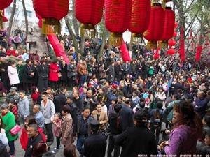 【广汉保保节】正月十六拉保保,媒体美女主持和加拿大帅哥也被拉啦