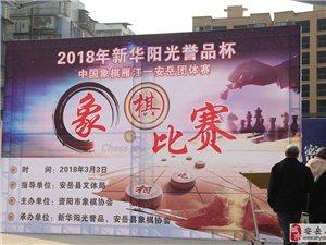 2018年新华阳光誉品杯中国象棋比赛