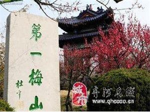 雷速3月份10-11南京梅花山,中山陵,明孝陵,夜游夫子庙两日游报名中