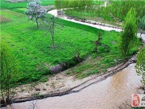 咸阳又新添两座国家湿地公园!