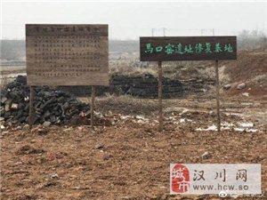 传承历史文化,马口窑遗址修复在即