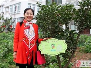 富顺县工商联总商会组织开展企业家义务植树活动
