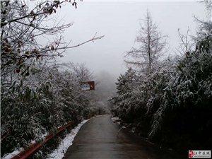 惊蛰后,洋县也有地方下雪了