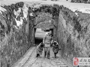 咸阳周边远去的地坑院 据说已有4000多年历史了