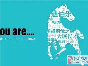 海西2018年春季大型网络招聘会,找工作,招人才,就上海西在线网!