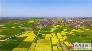 2018中国最美油菜花海汉中旅游文化节推介发布会在西安举行