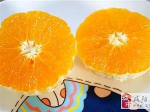 健康果蔬做起来――橙意小鱼儿