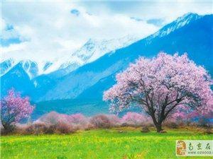 川藏和尼泊��,比天堂更有趣!2018心�S我��~ ~