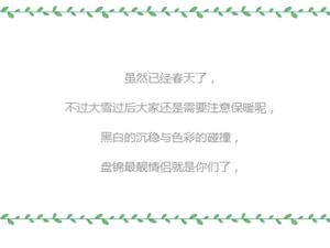 时尚盘锦3月9日街拍-黑白的沉稳与色彩的碰撞【九号摄影工作室】