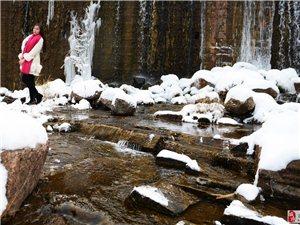 《雪舞》一场迟到的春雪