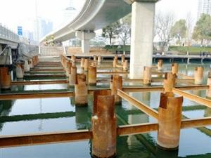 40多根铁柱栽入天鹅湖,干啥?