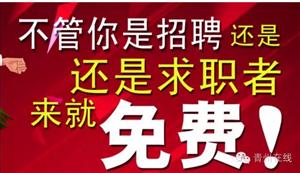 每周五,上午九点,青州在线现场招聘会,众多岗位等着你!!英雄请留步!