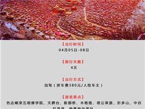 清明自驾】4月5日开启泸州―佛国色达环线4日自驾游(泸州出发)