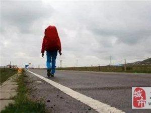 澳门大小点网址师徒徒步西藏第五十四天!肉球跟车赛跑3公里!