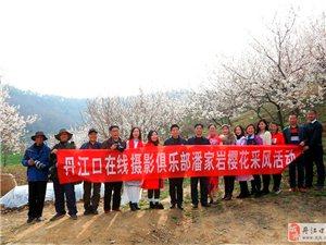丹江口有个樱桃沟 美景迷人不想走