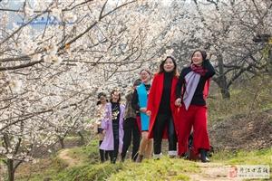 潘家岩― 丹江口的樱桃沟