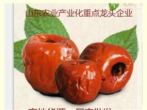 绿香源脆冬枣