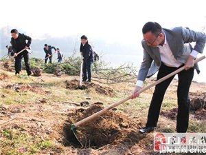 """富顺县启动""""一江两河""""绿色长廊工程建设"""