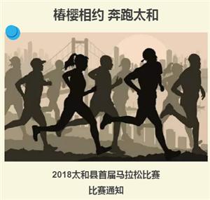 """【青・运动】""""椿樱相约 奔跑太和""""太和县首届马拉松比赛招募"""