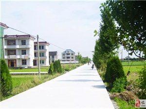 临泉将增加400条村级道路,涉及18个乡镇街道!!