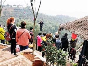 第一圈:望云峰/兆雅石龙村/香薰花湖