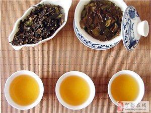 以茶雅致――修心养性茶艺课
