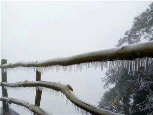 镇巴周末有多冷?看这些照片就知道!