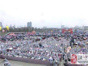 汉中最美油菜花海,今日在勉县启动