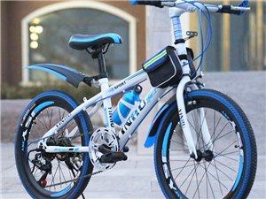 山地变速自行车 一件代发 淘宝  拼多多专供