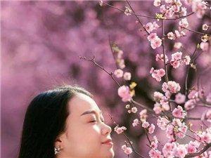 三月的汉中,一半是花海 , 一半是美女。