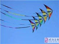 陕西将在咸阳首次举办国际风筝节面向游客免费开放