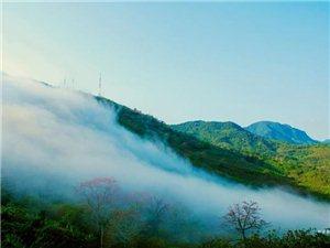 云雾之美,木棉花之艳一一白沙九架岭印象